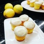 Mini cakes citronnés nappés de chocolat blanc
