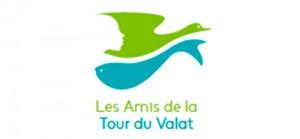 Logo_amis-TdV