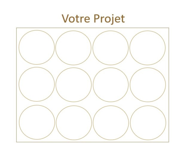 Les Prodigieux  Projet x12