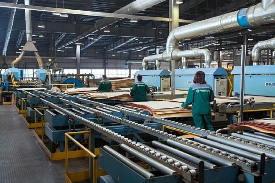 "Segezha Group""s Vyatka plywood mill improves production quality"