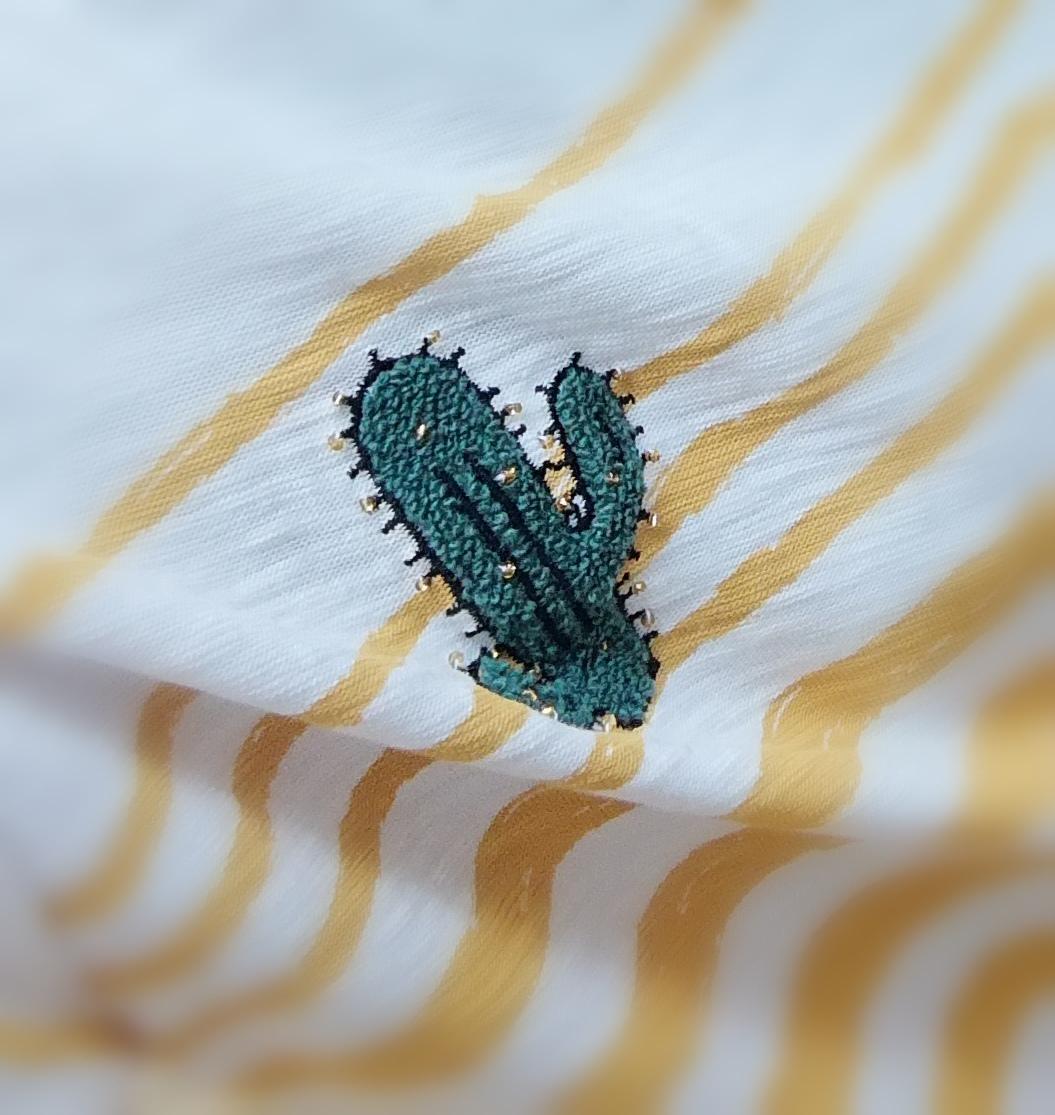 des rayures et des cactus-lesrdvdhelene.com