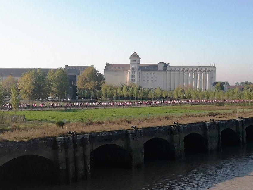 Ruban rose Bordeaux 2018