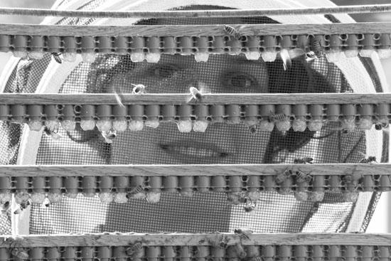 Woman beekeeper.