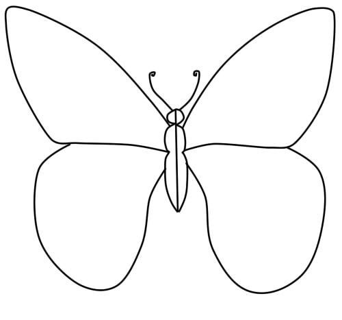 how to draw a butterfly phased pencil step 4