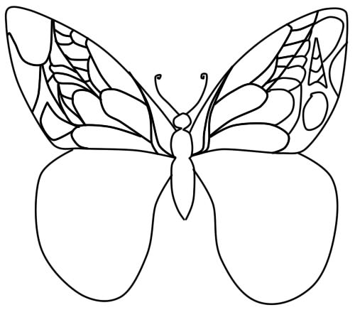 how to draw a butterfly in a phased pencil step 7