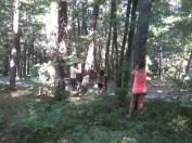découverte sensorielle en forêt