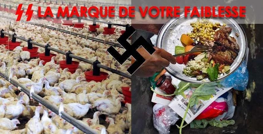 Gaspillage et abattage industriel l'Holocauste animale