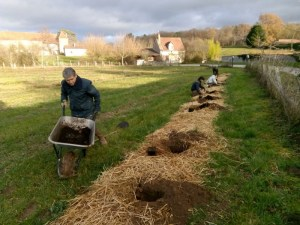 Sainte Catherine : Fin de plantation