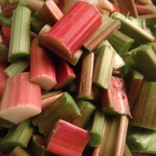 rhubarbe fraiche coupée en morceaux