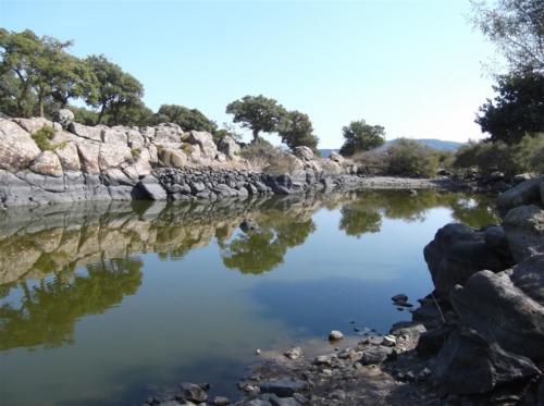 Turtle pool near Skalachori Lesvos