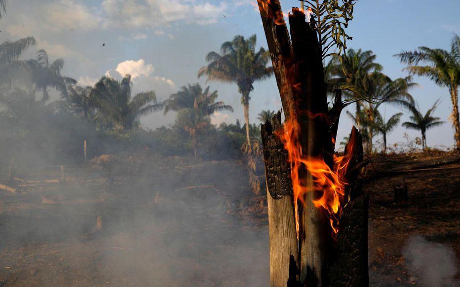 Incendie Amazonie