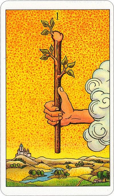 Tarotkaart 43 Staven 1 Aas Stokken Scepters Knotsen of Batons