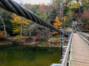 Turkey Run State Park with Kids - suspension bridge
