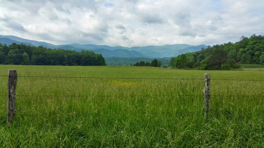 Avoiding Crowds in Gatlinburg and GSMNP - Cades Cove Meadow
