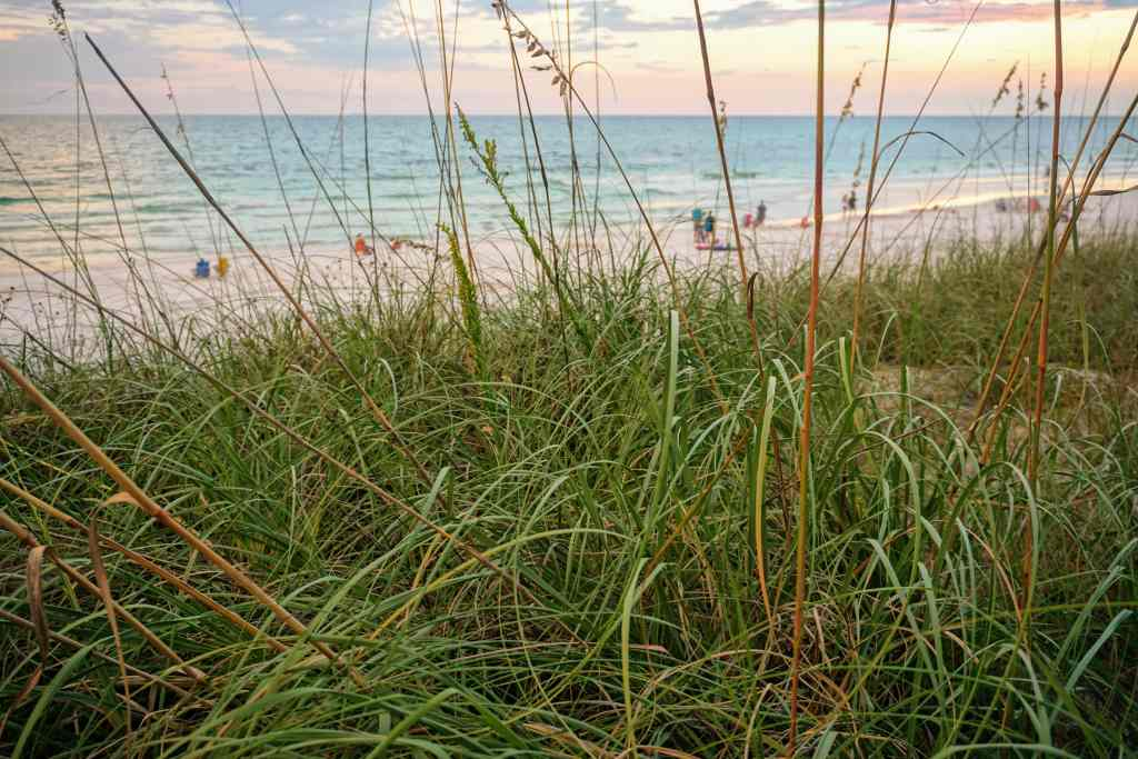 Fall Break Vacation Ideas for Families - South Walton Beach