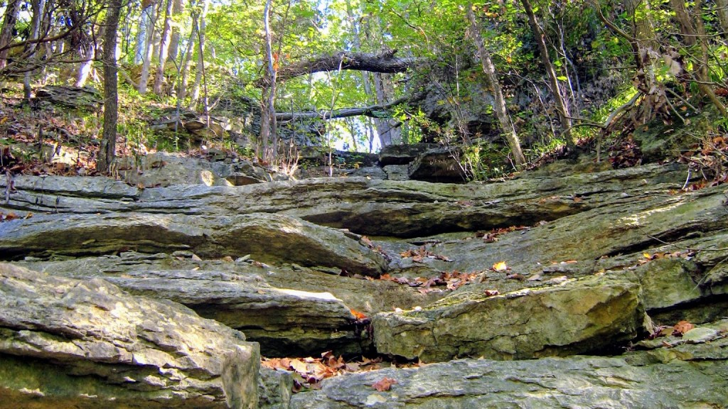 List of Indiana State Parks for Families - Clifty Falls State Park