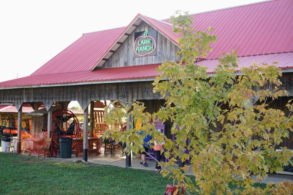 Fall activities in Indianapolis - Lark Ranch barn