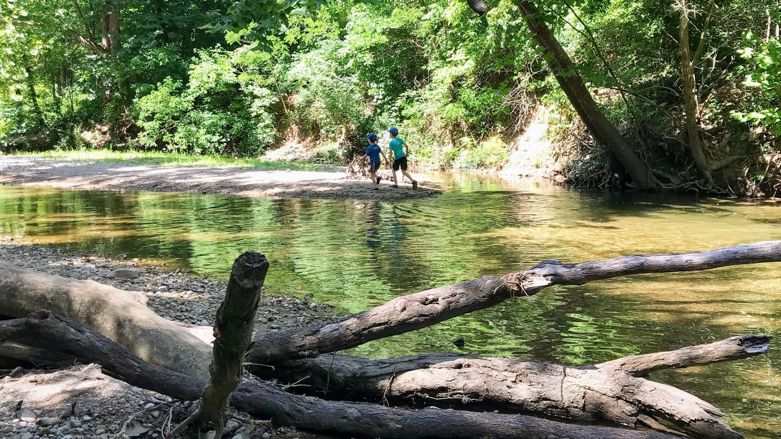 Best Hikes for Families in Indianapolis - Marott Park Williams Creek