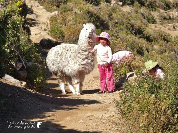 petite fille lama isla del sol bolivie