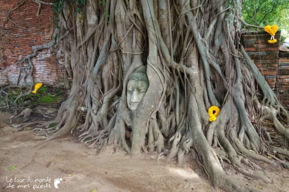 Ayutthaya-01