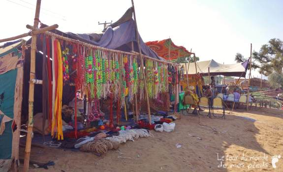 Pushkar (8)