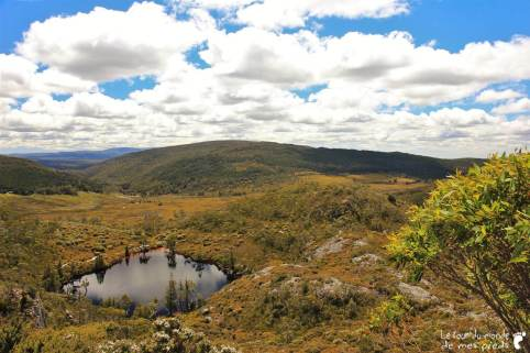Cradle-park-tasmanie (15)