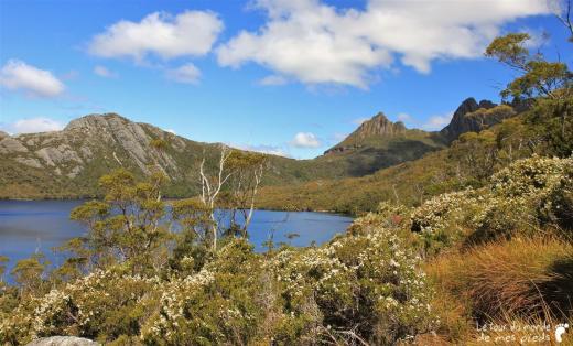 Cradle-park-tasmanie (22)