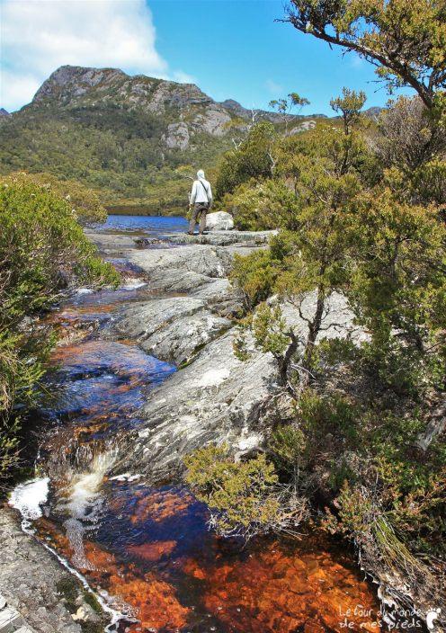 Cradle-park-tasmanie (7)