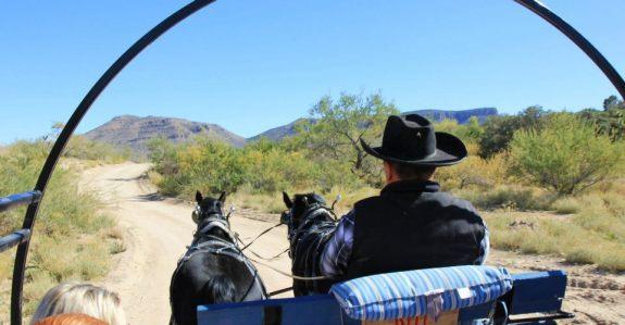 chevaux Grand Canyon