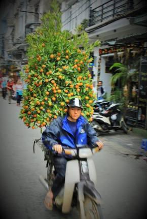 scooter Hanoï