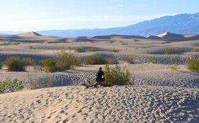 death valley sable