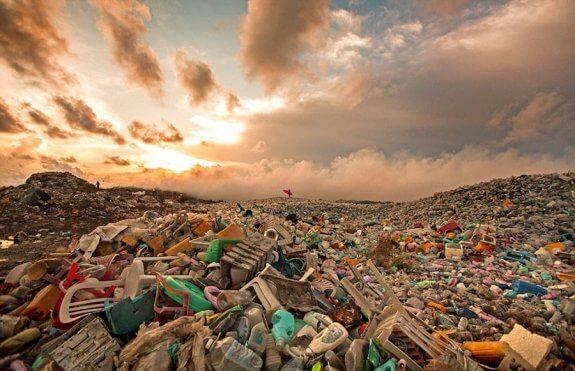 île-poubelle