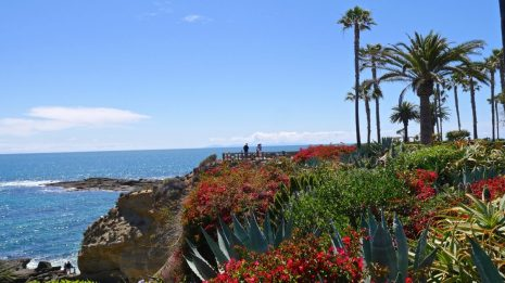 paysage californie