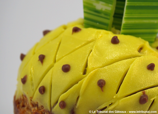 hugo-victor-chou-ananas-2