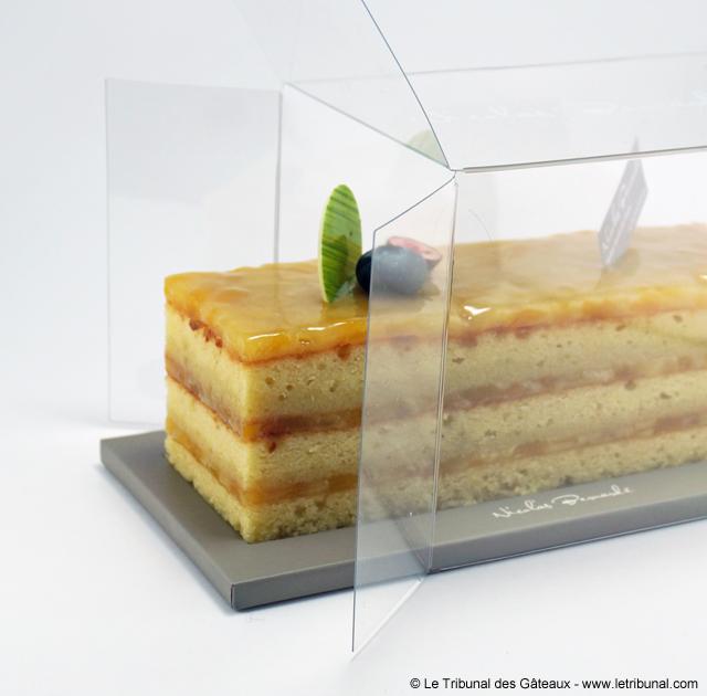 nicolas-bernarde-cake-mangue-coco-citron-6-tdg