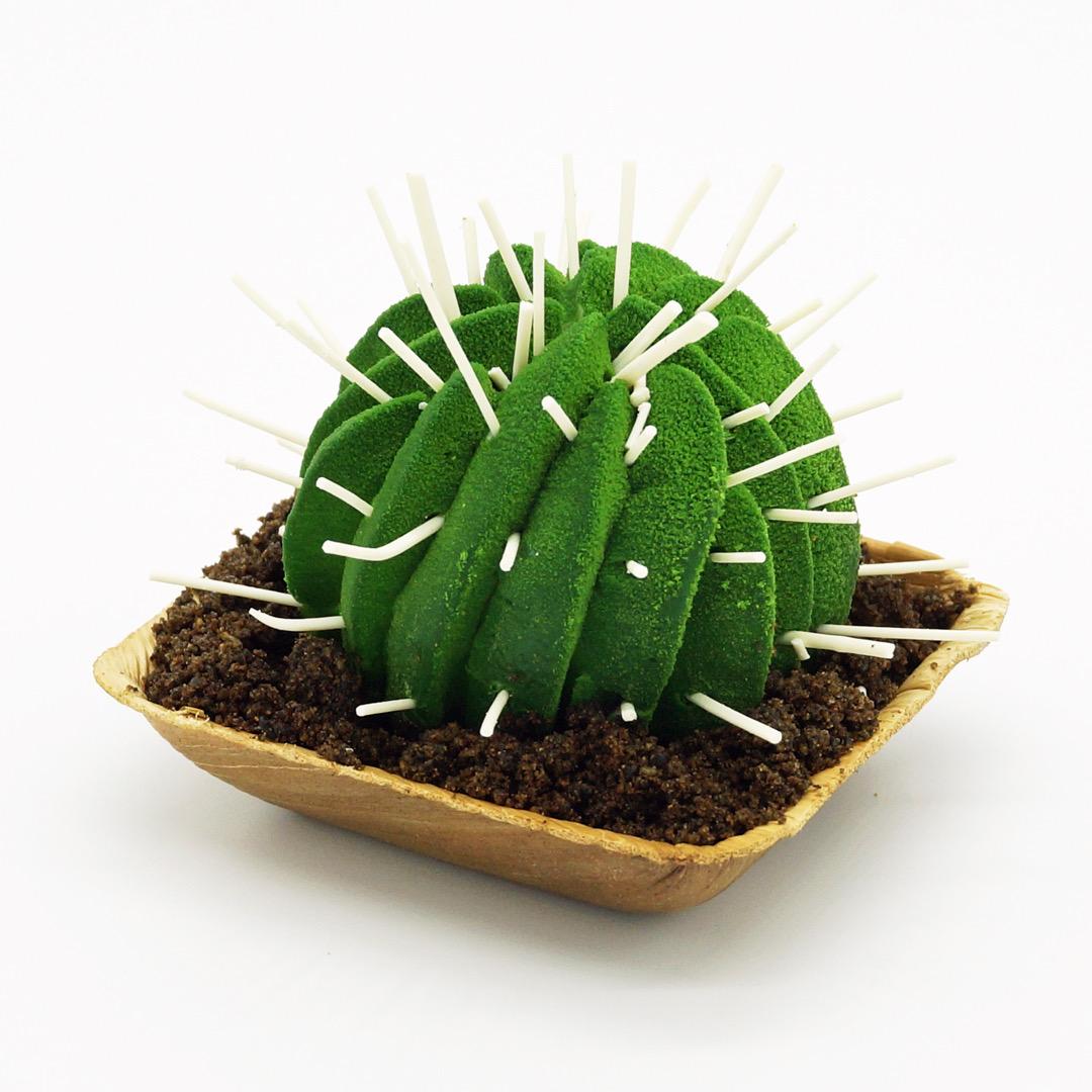Cactus par Wonderland Pâtisserie