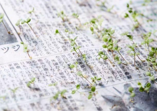 Mainichi Shimbun : le journal japonais que vous pouvez ...