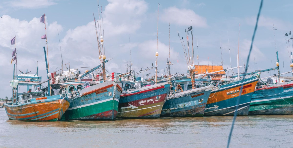 Was du in Negombo, Sri Lanka sehen kannst