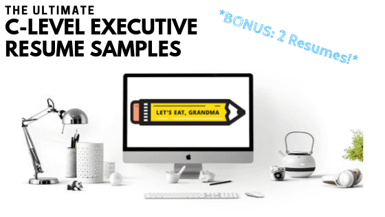 2 Exceptional Executive Resume Examples (with Writing Guide!)