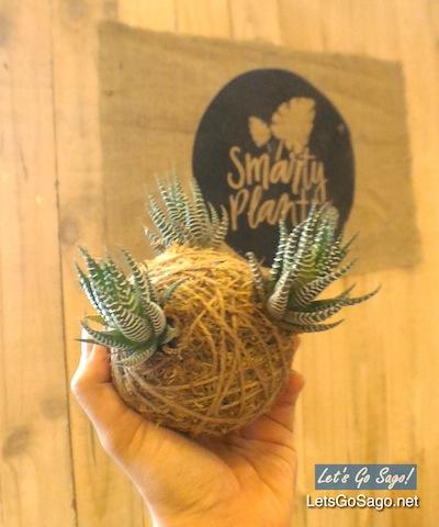 Smarty Plants PH