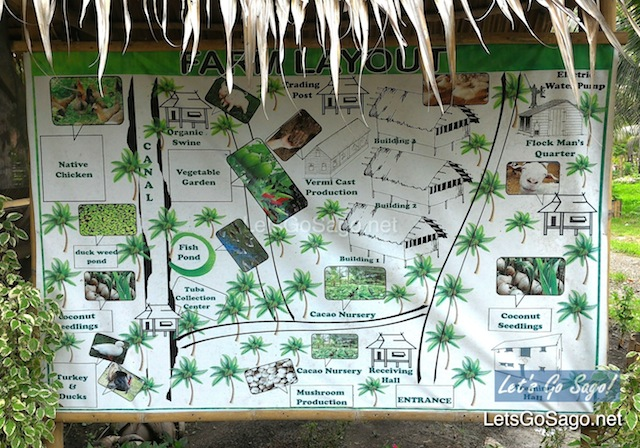 Buhian Farm Layout