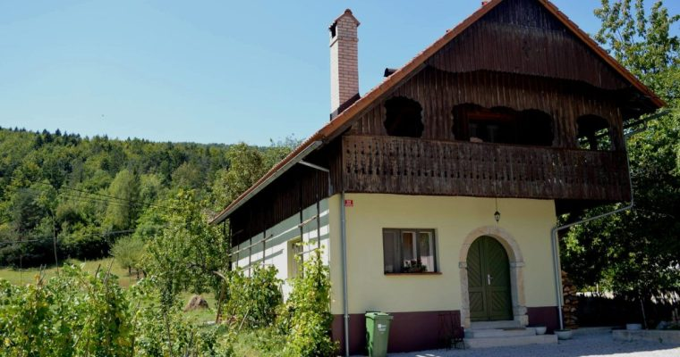 House Aurora in the heart of Slovenia's countryside