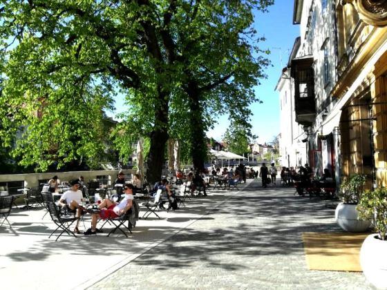 Ljubljana green spring delight
