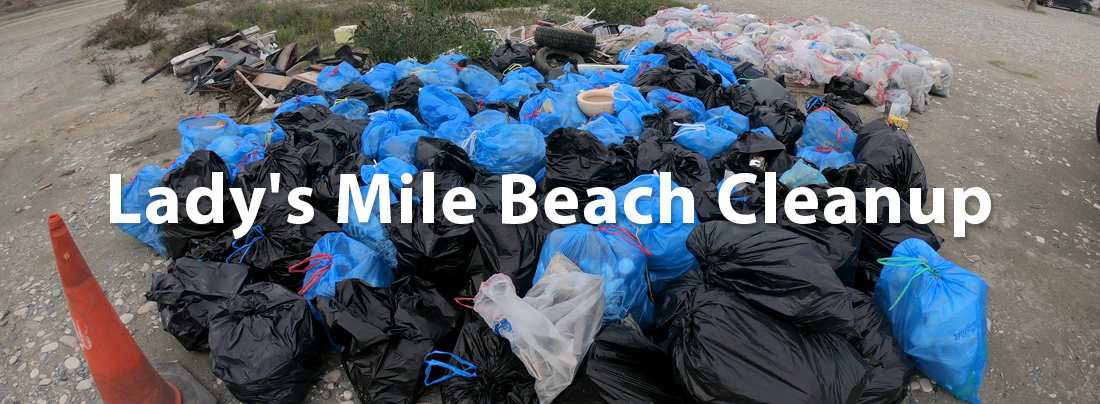 Lady's Mile Beach Cleanup