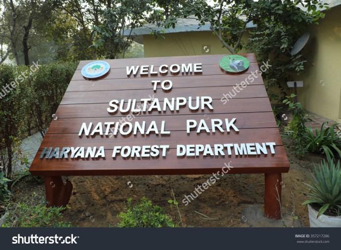 stock-photo-gurgaon-india-january-sultanpur-national-park-near-gurgaon-hariana-a-habitat-to-357217286.jpg