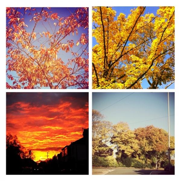 Autumn in photos