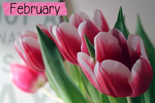 February Post