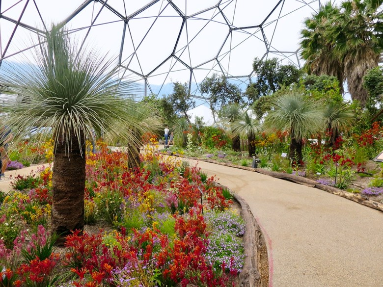 Biome Eden Project