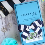 QVC TSV SHAY & BLUE 4 PIECE COLLECTION