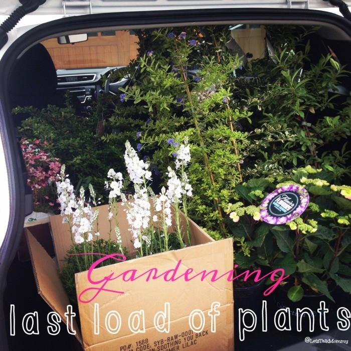 lastloadofplants